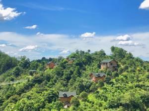在旅途·浏阳茴香小镇亲子团建森林民宿图片