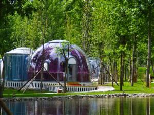 灵寿花溪谷树桥公园酒店图片