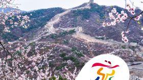 北京八达岭长城一日游【国企纯玩4小时|可+定陵颐和园|打卡鸟巢】