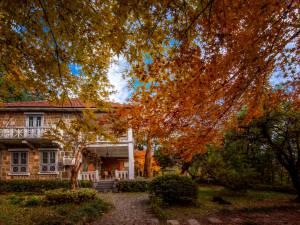 莫干山蔓庭花园观景度假别墅图片