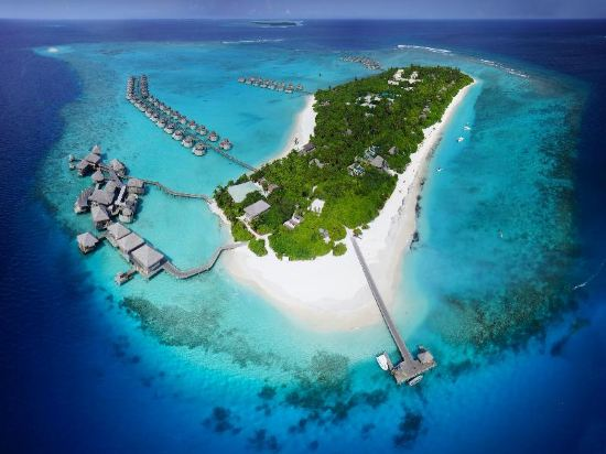 six senses laamu maldives   50 off booking ctrip