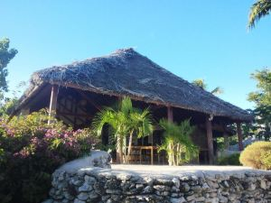 Tanna Evergreen Resort & Tours