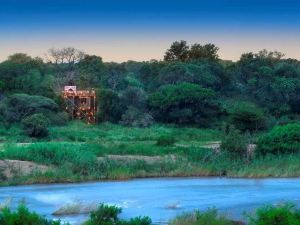 Lion Sands - Kruger National Park