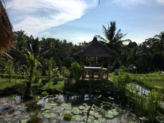 巴厘岛乌布皇家郁金香维式酒店(royal tulip visesa ubud bali)