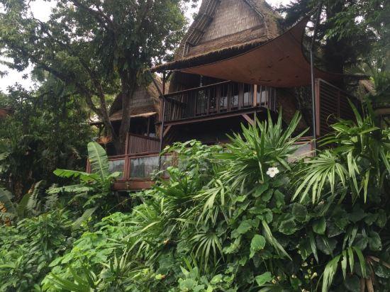 巴厘岛巴龙蝴蝶度假村
