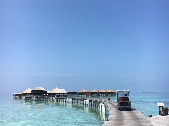 马尔代夫可可波杜希蒂岛度假村