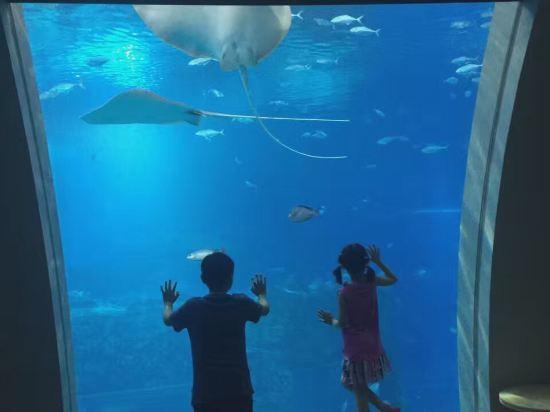 新加坡圣淘沙名胜世界海滨别墅酒店(resorts world sentosa – beach
