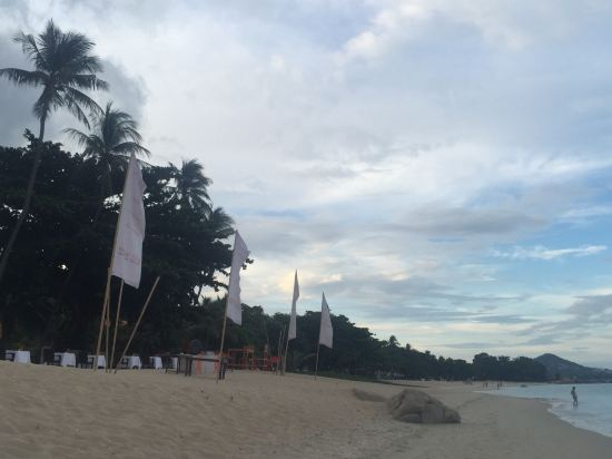 苏梅岛新星海滩别墅度假酒店预订及价格查询【携程】