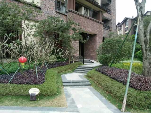 龙门保利锦里森巴南昆山温泉花园公寓酒店点评