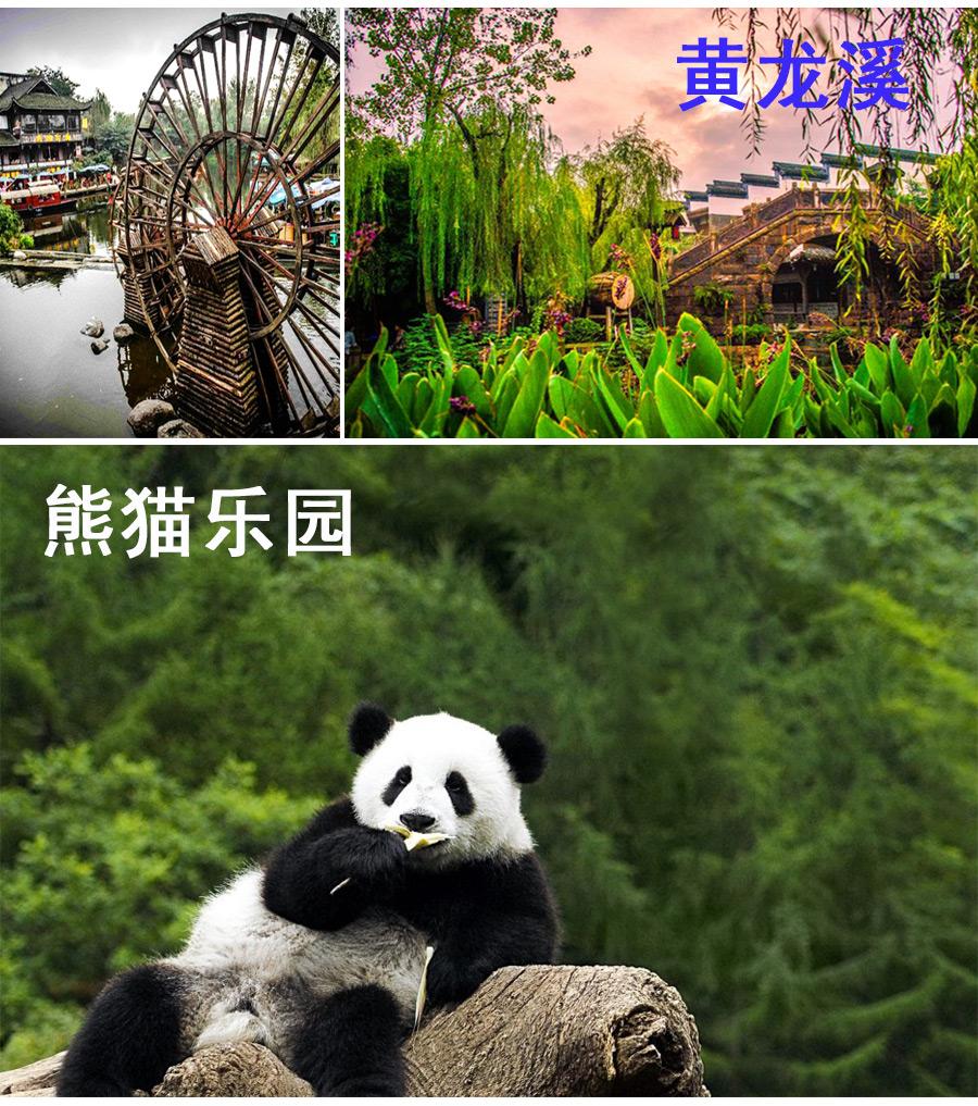 乐山+峨眉山+都江堰3日2晚跟团游黄龙溪古云师大附近美食图片