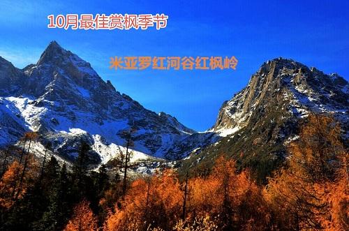 风景名胜区5日4晚跟团游·米亚罗红河谷红枫岭 千古情 单程高铁 立减