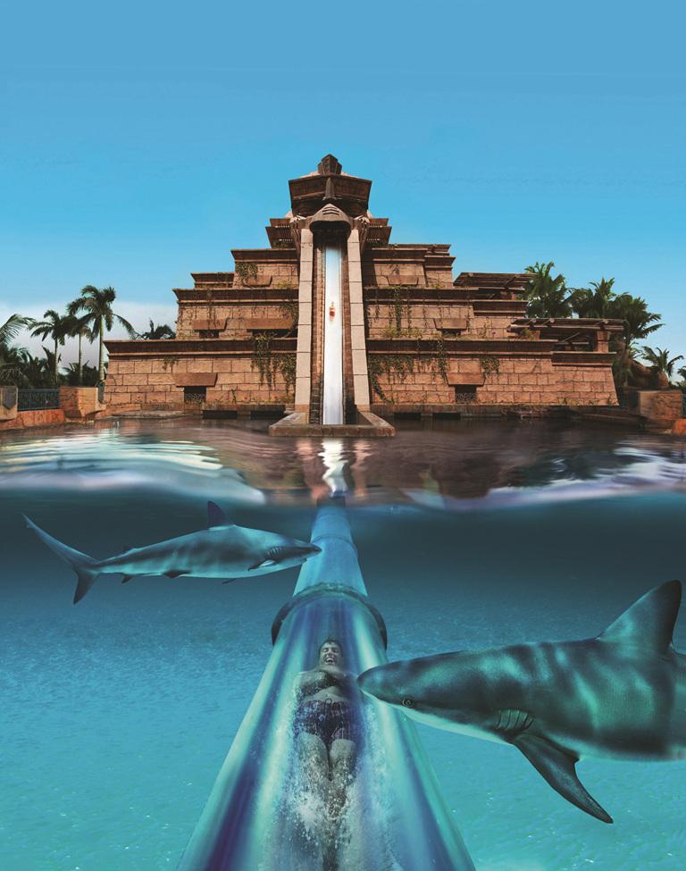 阿联酋迪拜棕榈岛palm beach 帆船酒店 阿布扎比6日4晚跟团游·亚特兰