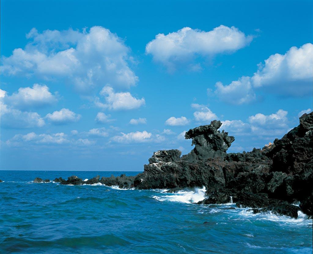韩国济州岛4日3晚半自助游·纯玩 1天自由 aqua水族馆