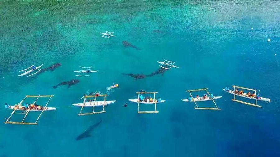 菲律宾长滩岛5日半自助游(4钻)·皇冠丽晶会议中心