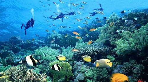 西沙群岛5日4晚跟团游·蜜月之旅