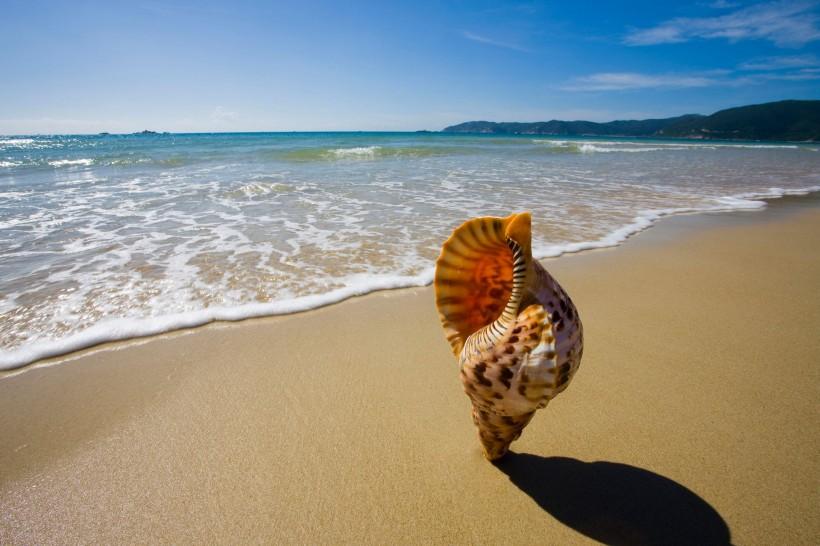 海南三亚 天涯海角 呀诺达5日4晚跟团游·双飞半自由行深度纯玩 豪.