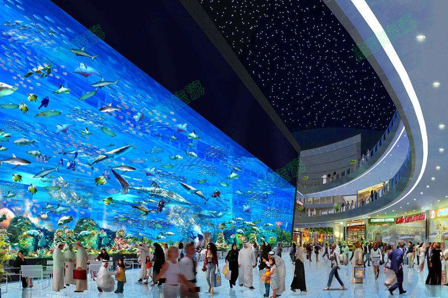 迪拜+阿布扎比+沙迦6日4晚跟团游·水下动物园+棕榈岛