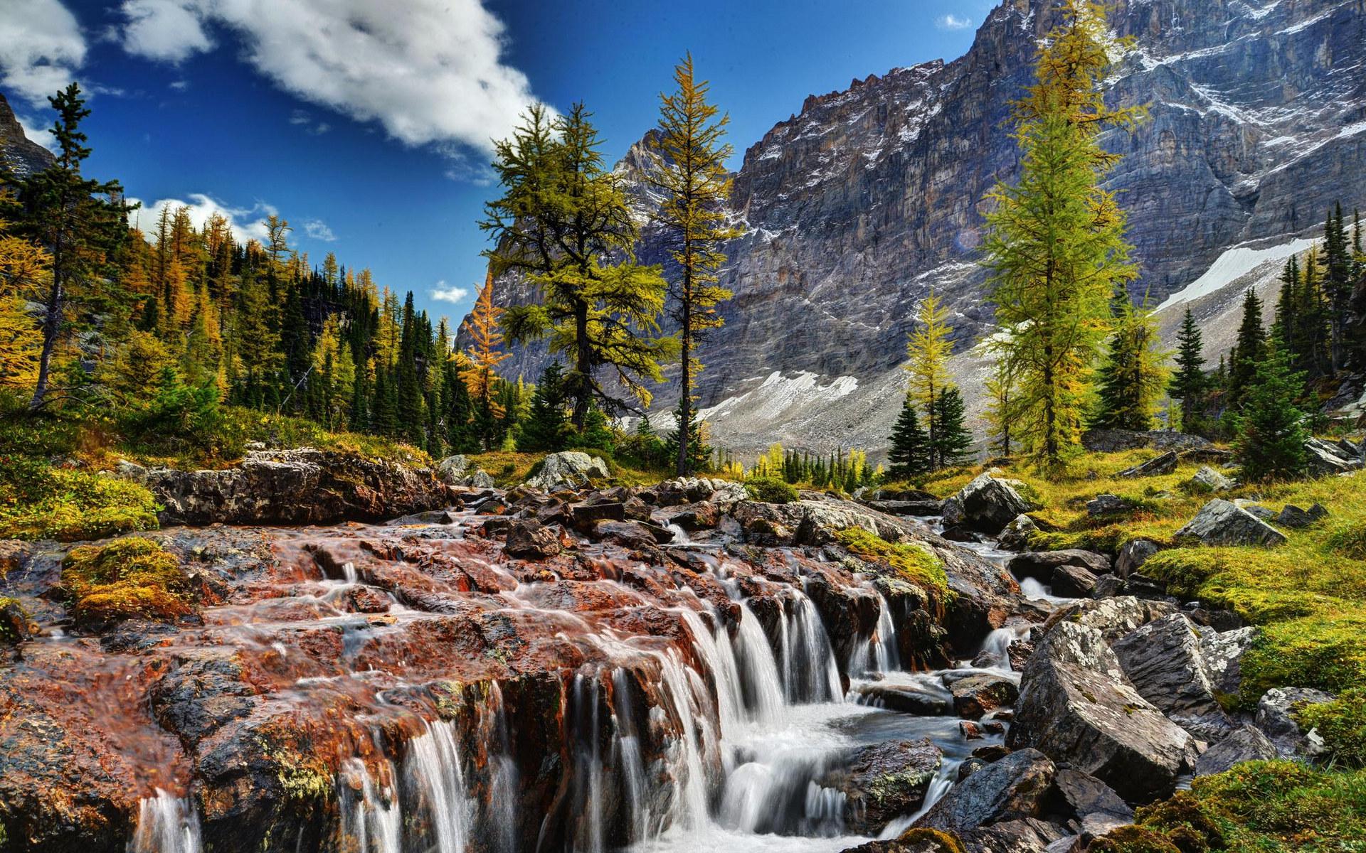 美国黄石国家公园+大提顿国家公园+加拿大班
