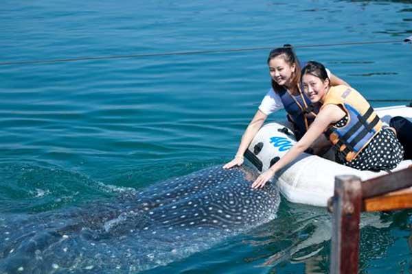 摄影之旅·三亚+分界洲岛2日半自助游·浮潜+船票