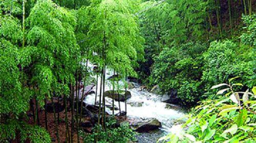 临安2日1晚自由行(4钻)·临安万豪大酒店-大明山风景区-白水涧风景区