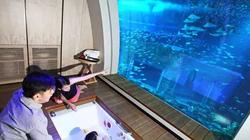 新加坡圣淘沙名胜世界海滨别墅