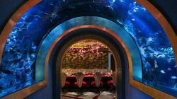 帆船酒店水下餐厅享用六道式晚宴