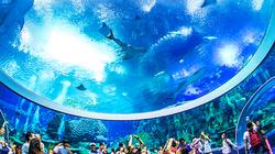 长隆海底世界