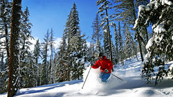 银星滑雪场,专业滑雪者矫健身姿