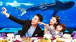 长隆海底餐厅