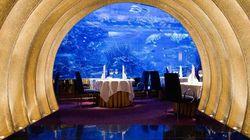 帆船酒店海底餐厅