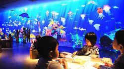 未来游乐园·绘画水族馆