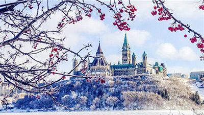 在美好的季节 遇见绝美加拿大