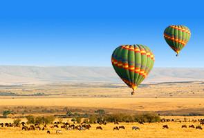 非洲两大国家公园游猎