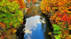 北海道秋景