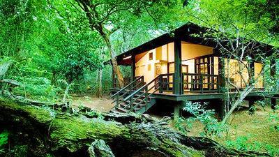 芬达保护区奢野小屋