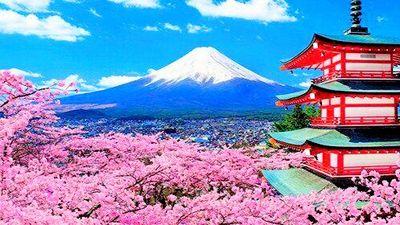 日本赏樱季