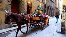 乘坐马车漫游古城