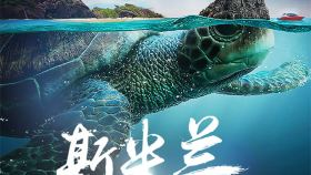 普吉岛斯米兰群岛浮潜一日游【多船型/快速登岛/2次浮潜】
