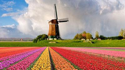送给家庭最好的礼物-荷兰之旅