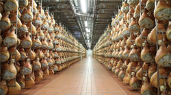 帕尔玛火腿工厂