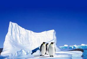 梦想南极 极致体验