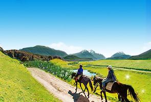 新西兰最美