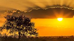 南非沙漠日落