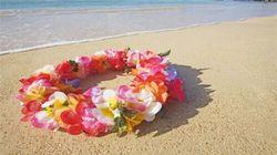 蜜恋夏威夷