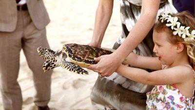 Vomo-Releasing Turtle