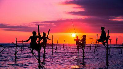 夕阳下的海钓