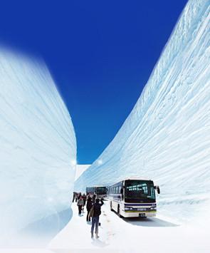日本雪墙奇景