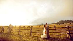 牧场拍摄完美婚纱