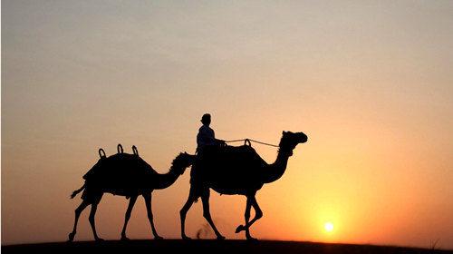 沙漠骑骆驼