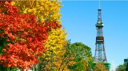 札幌公园秋景